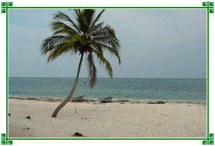 http://www.india-travel-agents.com/southindia/images/lakshadweep-islands.jpg